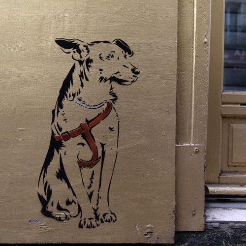 Bébert le chien / Marchand d'Habits / 2016