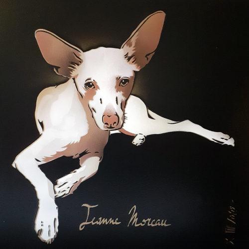 "MAYA la Podenca dite ""Jeanne Moreau"" (50x50cm) / 2020"