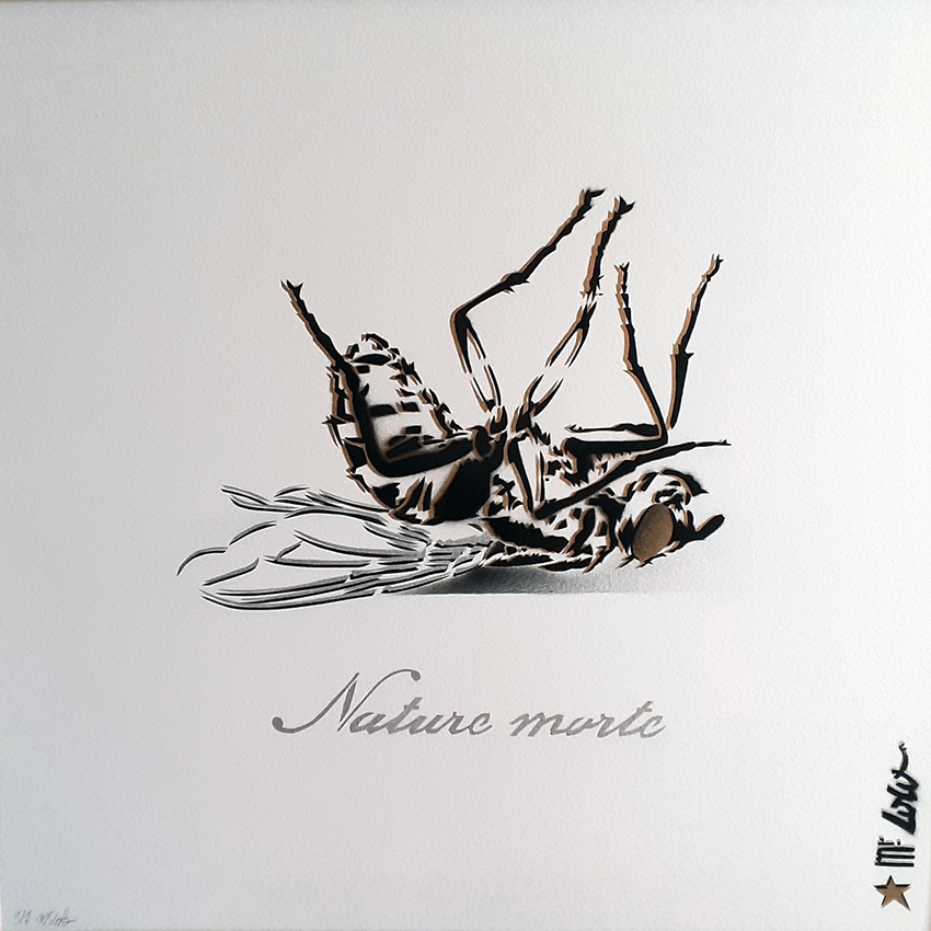 Nature morte (multiple)/ pochoir sur papier Montval 300gr (50x50cm) / 2020