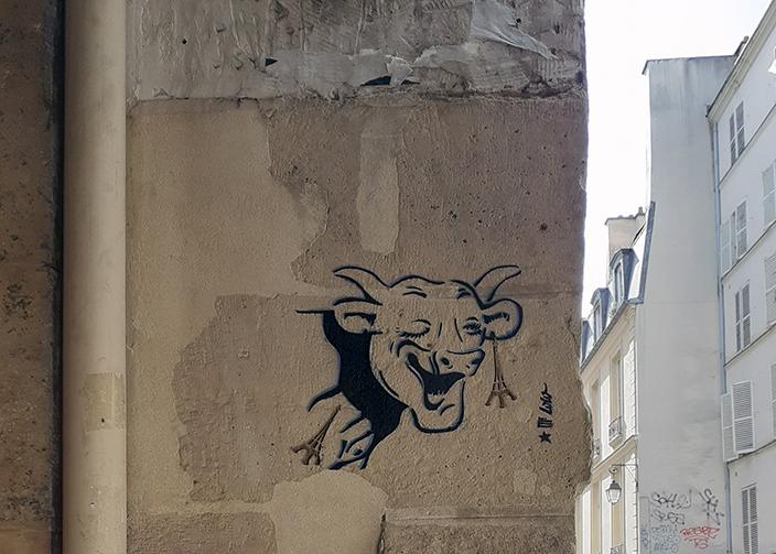 la Vache du dindon / 2020